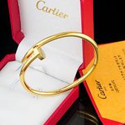 Cartier Bracelets #9111438