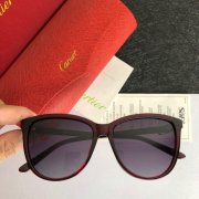 Cartier AAA+ Sunglasses #9875150