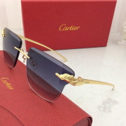 Cartier AAA+ Sunglasses #9875159