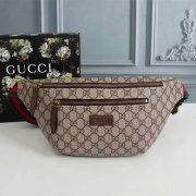 Gucci AAA+ Waist Bag #9102477
