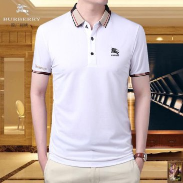 Burberry T-Shirts for Burberry  AAAA T-Shirts #99116584