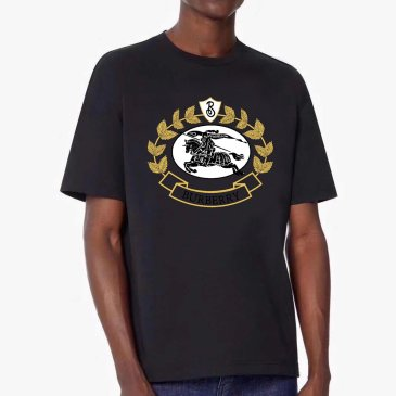 Burberry T-Shirts for Burberry  AAAA T-Shirts #99874195
