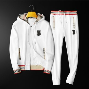 Burberry Tracksuits for Men's long tracksuits #99905483